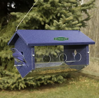 bluebird stake feeder oriole erva feeders fdr